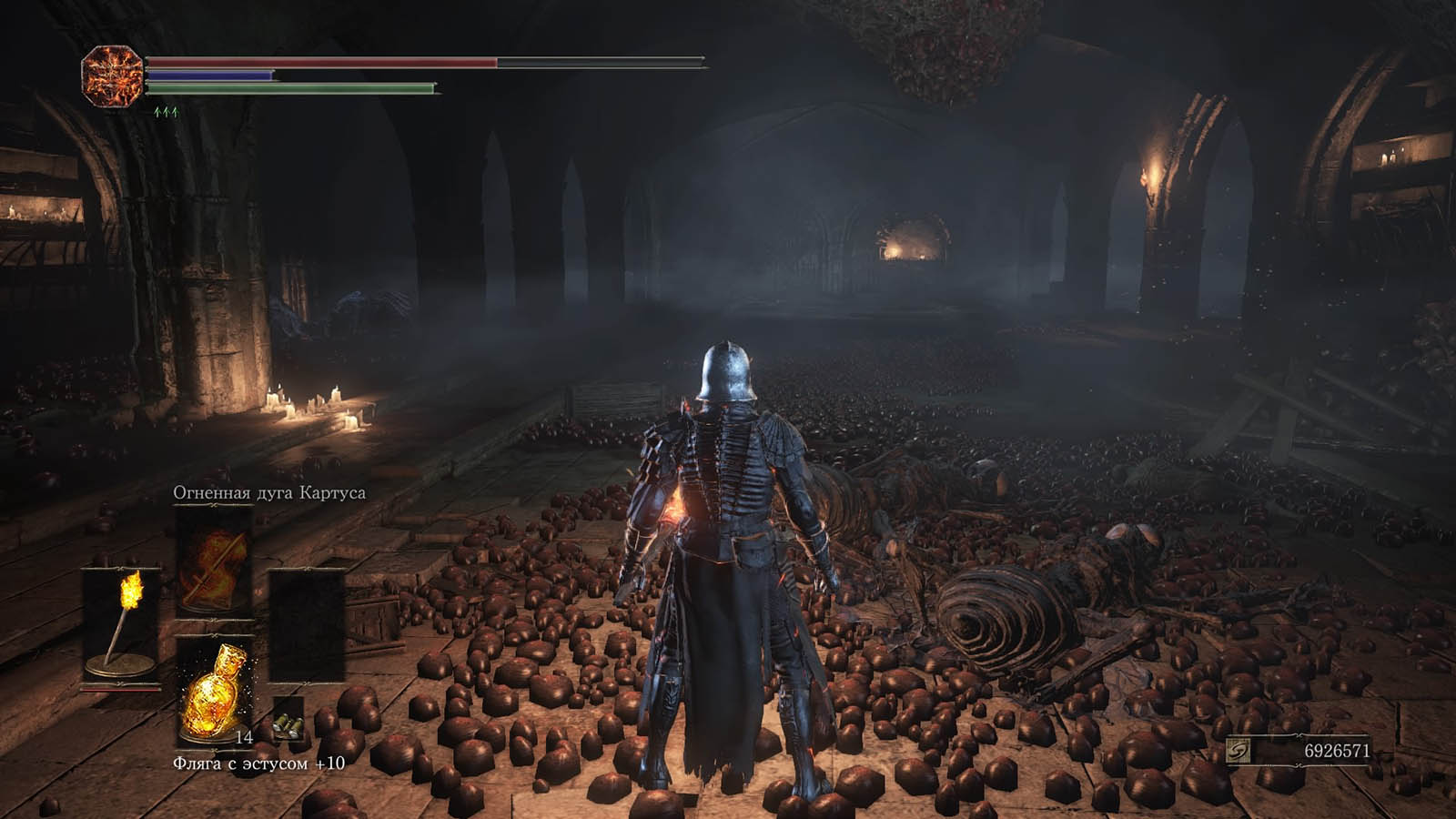 Dark Souls III: Ashes of Ariandel Кадр из игры